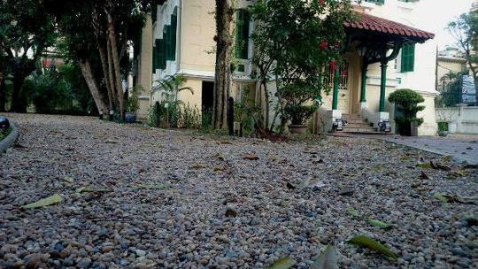 """""""Khu vườn bí mật"""" trong Đại sứ quán Pháp ở Hà Nội - 15"""