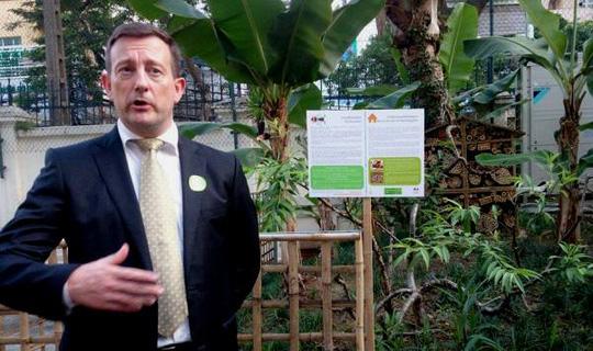 """""""Khu vườn bí mật"""" trong Đại sứ quán Pháp ở Hà Nội - 5"""