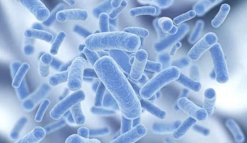 4 sai lầm nghiêm trọng khi dùng kháng sinh trị viêm đại tràng - 2
