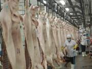 Thị trường - Tiêu dùng - Thịt heo dư thừa, sao không xuất khẩu được?