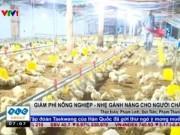 Thị trường - Tiêu dùng - Giảm phí nông nghiệp - Nhẹ gánh nặng cho người chăn nuôi