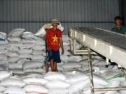 Thị trường - Tiêu dùng - Gạo Việt có hợp đồng 'khủng' 1 triệu tấn/năm