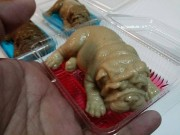 Món bánh cún con trông như thật khiến cư dân mạng dậy sóng