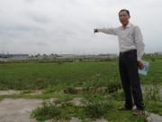 Thị trường - Tiêu dùng - Thanh Hóa: Quá xót cho 100ha đất làm muối bị bỏ hoang vì ô nhiễm