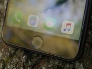Dế sắp ra lò - Xác nhận iPhone 8 sẽ loại bỏ hoàn toàn nút Home