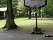 """Ảnh động: Sấp mặt vì bóng rổ  """" biến tướng """""""