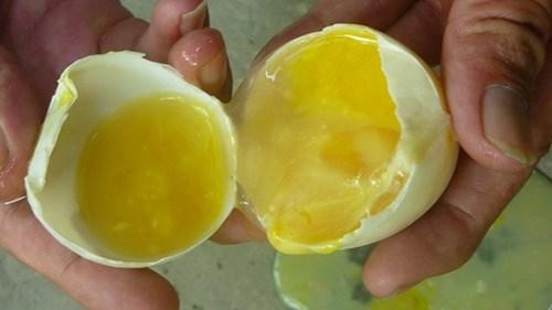 Hiểm họa gây bệnh từ trứng ung - 2