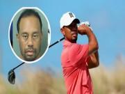 Thể thao - Tiger Woods bị tống giam: Chuỗi bi kịch của tay golf huyền thoại