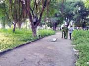 Tin tức trong ngày - Tá hỏa phát hiện xác người trên cây trong công viên