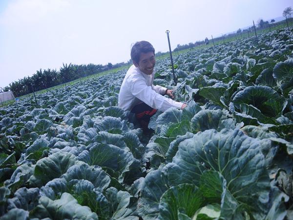 Những lão nông đổi đời nhờ mê rau công nghệ cao - 2