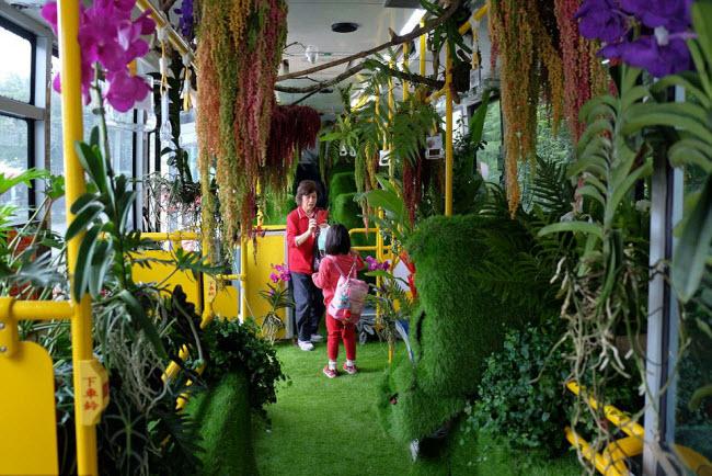 """""""Trốn nóng"""" trong xe bus """"rừng"""" lạ lùng ở Đài Loan - 1"""