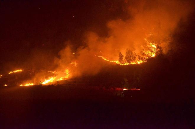 Hà Nội: Cháy rừng ở Sóc Sơn là lớn nhất, lâu nhất trong lịch sử - 1