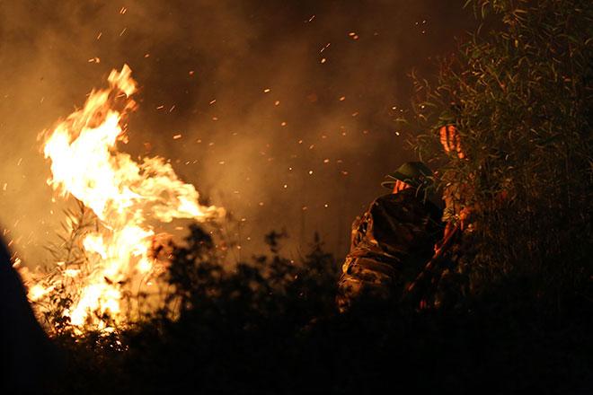Hiện trường vụ cháy rừng lớn nhất lịch sử ở Sóc Sơn - 2