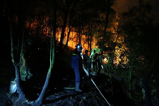 Hiện trường vụ cháy rừng lớn nhất lịch sử ở Sóc Sơn - 7