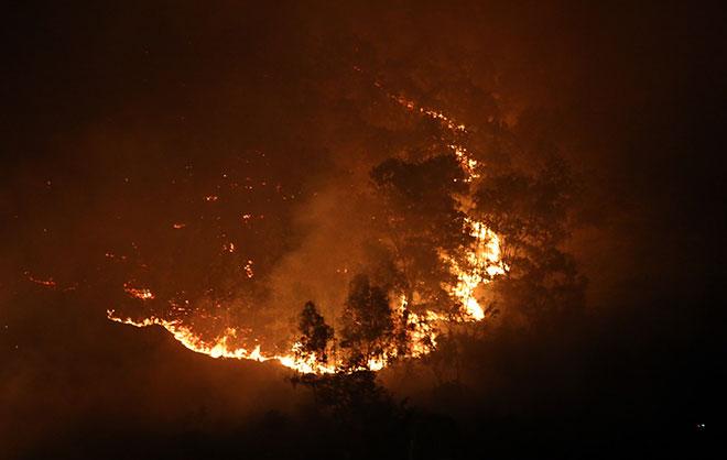 Hiện trường vụ cháy rừng lớn nhất lịch sử ở Sóc Sơn - 6