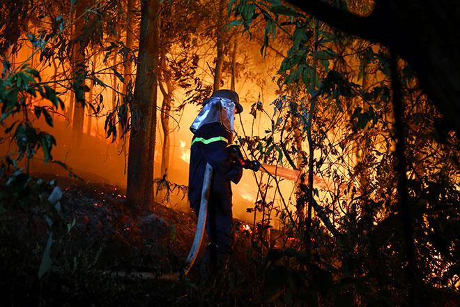 Hiện trường vụ cháy rừng lớn nhất lịch sử ở Sóc Sơn - 8