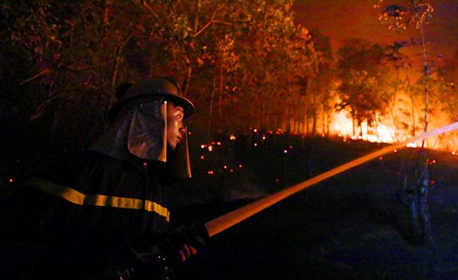 Hiện trường vụ cháy rừng lớn nhất lịch sử ở Sóc Sơn - 9