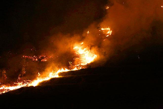Hiện trường vụ cháy rừng lớn nhất lịch sử ở Sóc Sơn - 10