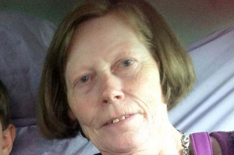 Ireland: Đến thăm con, mẹ bị 2 chó ngao của con vồ chết - 2
