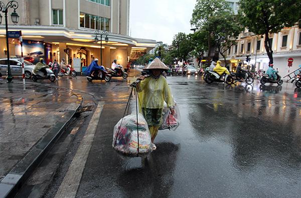 """Ảnh: Người Hà Nội sung sướng đi dưới """"mưa vàng"""" - 18"""