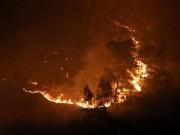 Tin tức trong ngày - Hiện trường vụ cháy rừng lớn nhất lịch sử ở Sóc Sơn