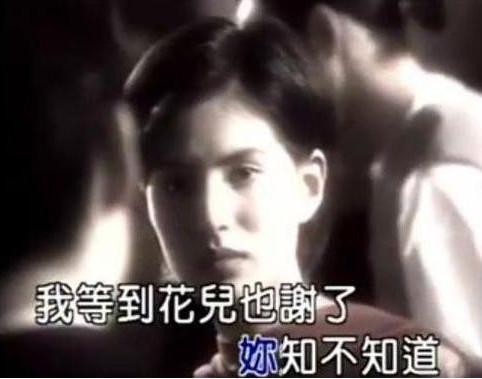 """Không ngờ Triệu Vy, Phạm Băng Băng từng đi diễn lót, cát xê """"bèo"""" - 5"""