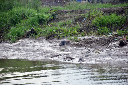 Phát hiện xác người không mặc áo trên sông Sài Gòn - 1