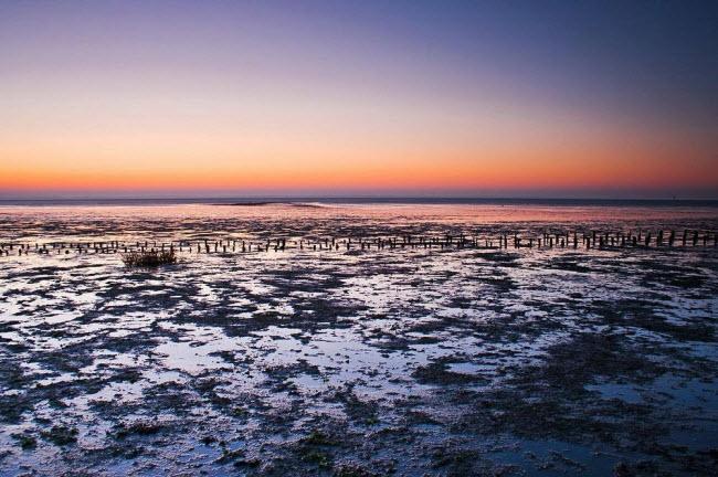 Kỳ lạ vùng biển biến mất hai lần một ngày - 4