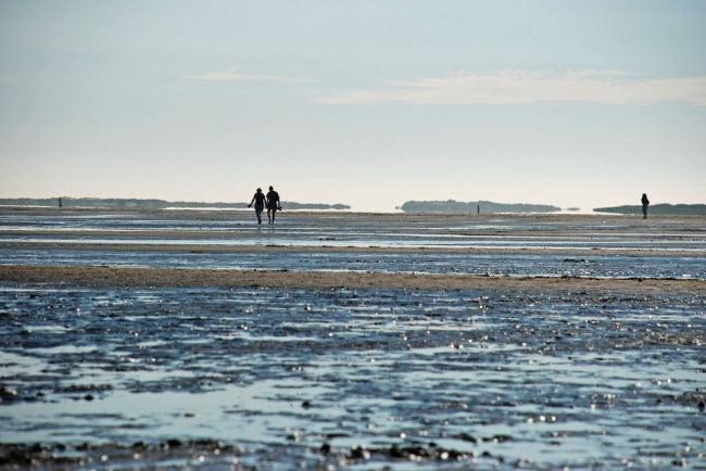 Kỳ lạ vùng biển biến mất hai lần một ngày - 8