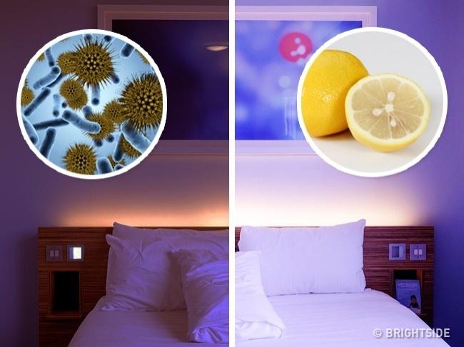 Đây là lý do người Nhật luôn để vài lát chanh trong phòng ngủ - 4