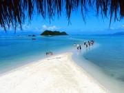 Check-in tại  thiên đường sống ảo  hot nhất Việt Nam