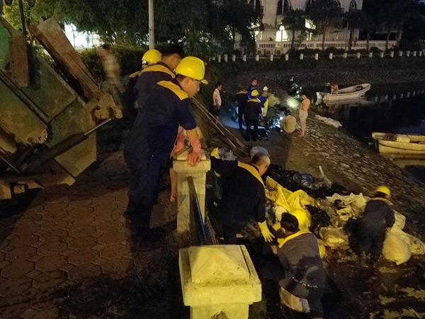 Hơn 40 công nhân xuyên đêm vớt cá chết ở hồ Hoàng Cầu - 4