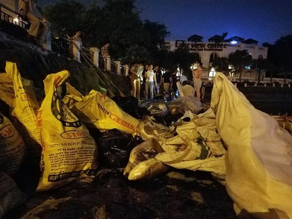 Hơn 40 công nhân xuyên đêm vớt cá chết ở hồ Hoàng Cầu - 5
