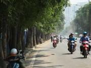 """Tin tức trong ngày - Đề xuất chặt 1.300 cây xanh: """"Muốn giữ cây thì phải nắn đường"""""""