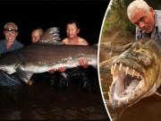 Thế giới - Bắt được cá chình khổng lồ như quái vật thời tiền sử