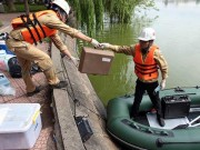 Tin tức trong ngày - Sẽ nạo vét bùn Hồ Gươm với quy mô lớn nhất 20 năm qua