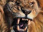 Thế giới - Đàn sư tử châu Phi tàn sát 1.500 người đẫm máu nhất lịch sử