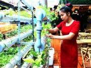 Bạn trẻ - Cuộc sống - Cà phê rau độc đáo của nữ giảng viên ở Buôn Ma Thuột