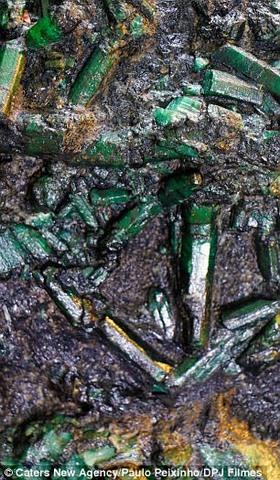 Brazil: Đào được viên đá 6.900 tỉ, suốt ngày lo bị giết - 1