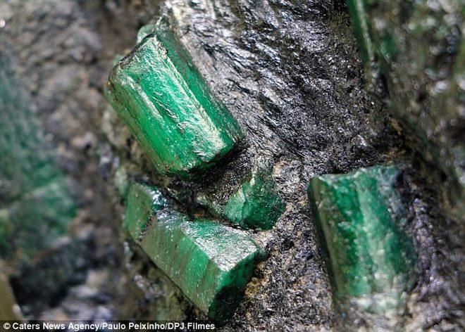 Brazil: Đào được viên đá 6.900 tỉ, suốt ngày lo bị giết - 2