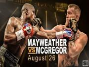 Thể thao - Boxing tỷ đô: Mayweather xỏ găng luyện võ, chờ đấm gục McGregor