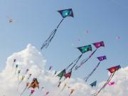 Nhiều hoạt động đặc sắc tại lễ hội diều Đầm Sen