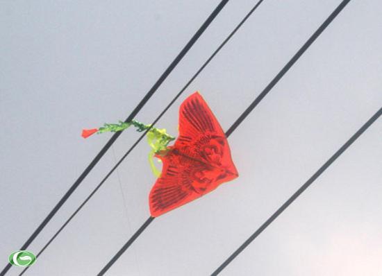 Gỡ diều mắc trên dây điện, một người phụ nữ tử vong - 1