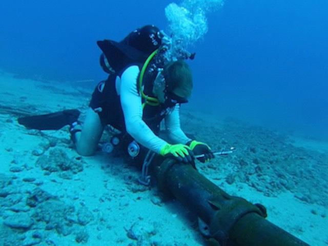 Sự cố đứt cáp quang biển APG sẽ được khắc phục xong vào ngày 14/7 - 2