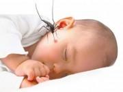 Sức khỏe đời sống - Đã mắc sốt xuất huyết một lần sẽ miễn dịch suốt đời?