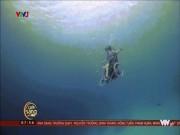 Cô gái bị liệt lặn dưới biển cùng xe lăn gây choáng