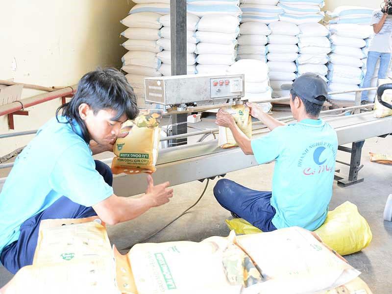 Cấm xuất khẩu gạo là hết sức vô lý - 1