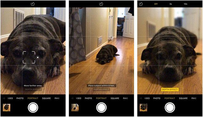 Cách chuyển ảnh nền mờ thành thông thường trên iOS 11 - 2