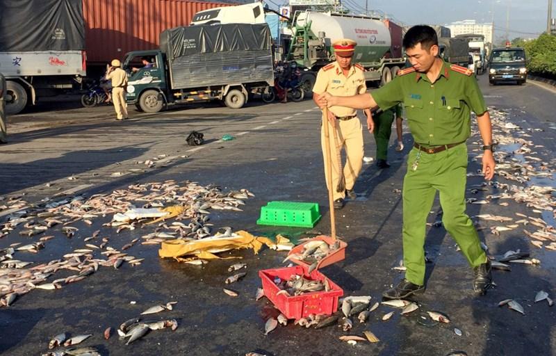 CSGT quận 12 cùng người dân thu gom cá giúp chủ xe gặp nạn - 3