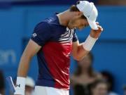 Tin thể thao HOT 27/6: Murray dính chấn thương trước Wimbledon